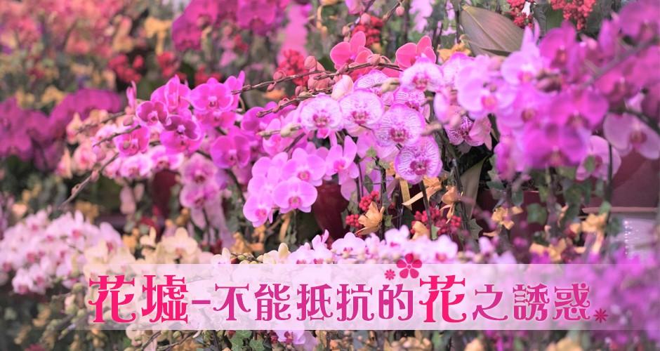 不能抵抗的花之誘惑