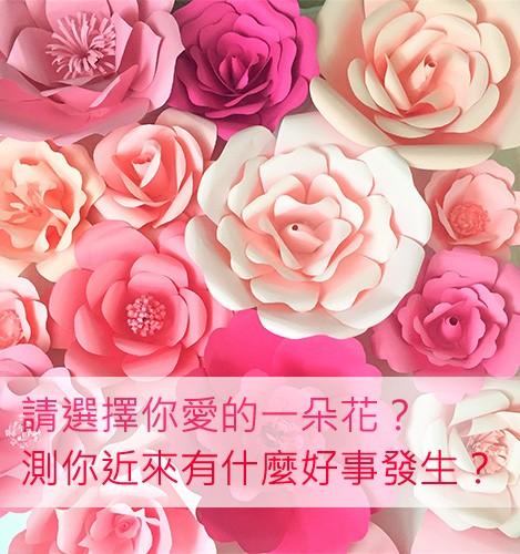 請選擇你愛的一朵花?測你近來有什麼好事發生?